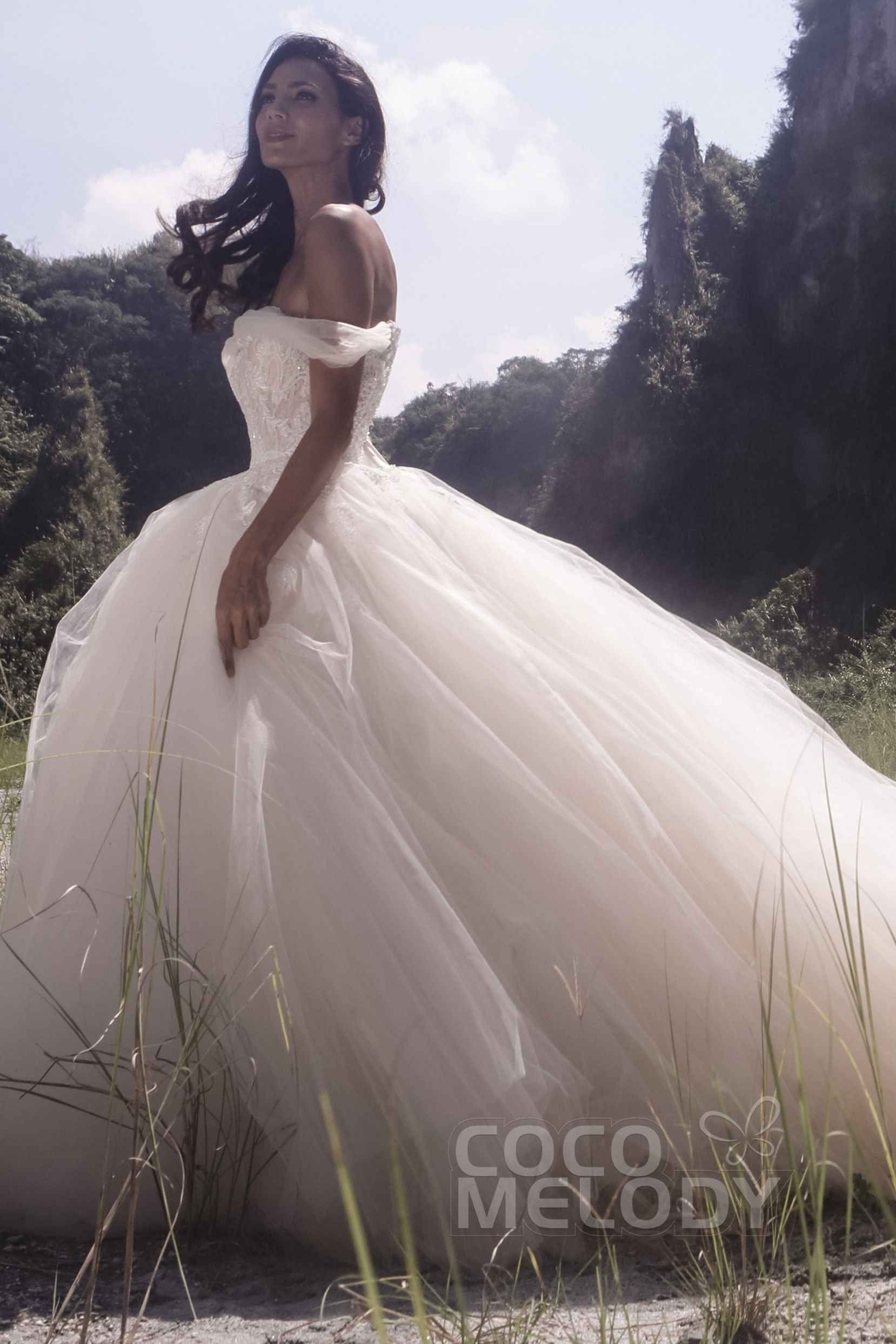 Try at Home Princess Court Train Satin Tulle Wedding Dress ...