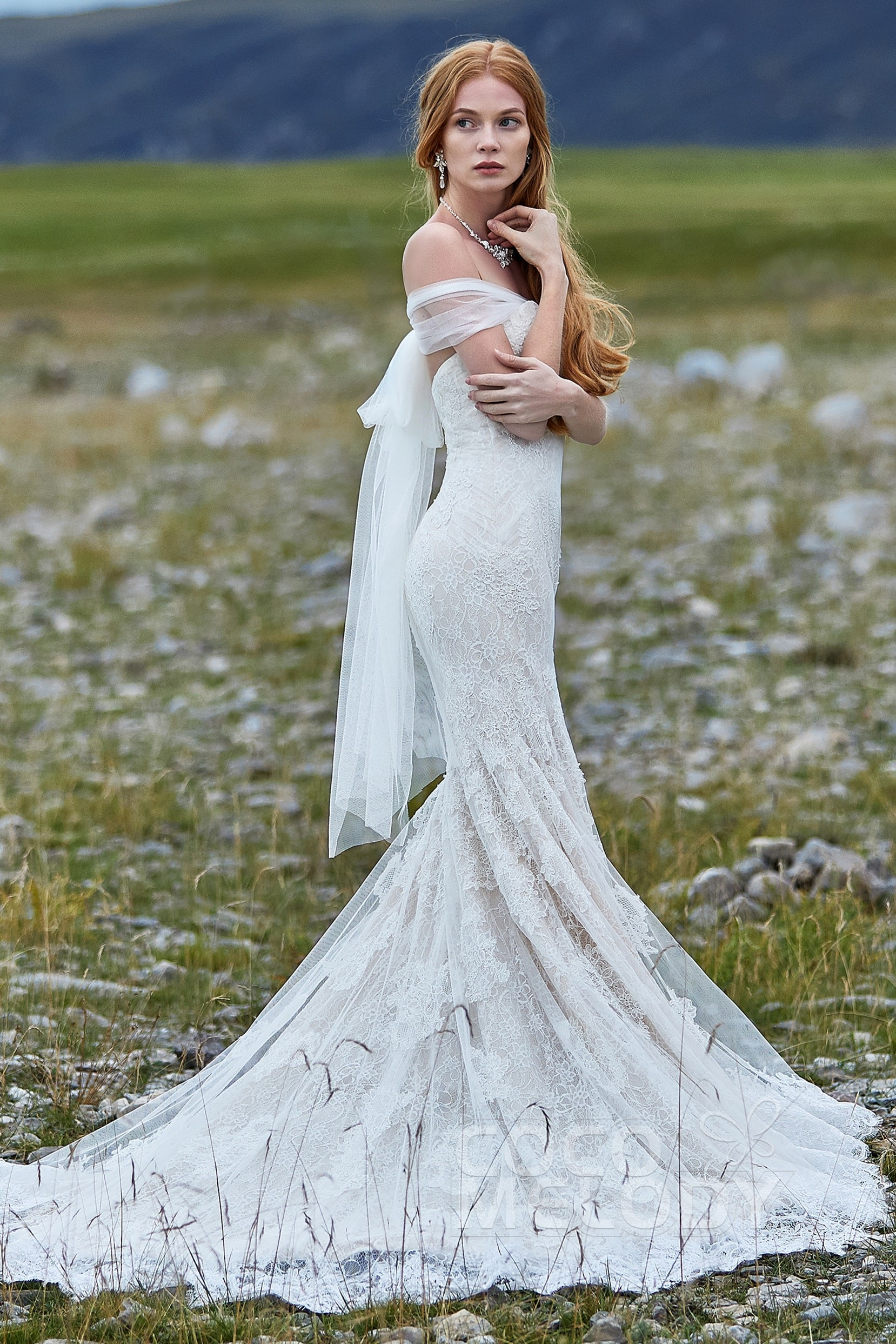 Try at Home Sweetheart Natural Lace Zipper Wedding Dress ...
