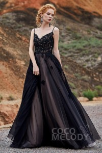 A-Line Sweep Train Tulle Lace Gothic Wedding Dress LD5821