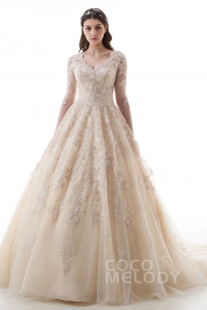 Luxurious Princess V Neck Natural Court Train Lace And Tulle Long